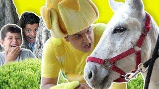 Fozi Mozi Y Tutti - Donkey Para la Venta thumbnail
