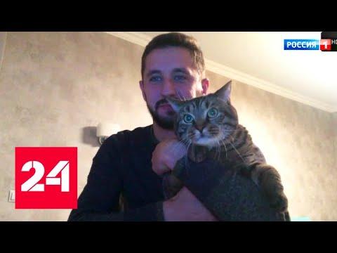Смотреть фото Упитанный кот улетел с хозяином во Владивосток после замены на взвешивании - Россия 24 новости Россия