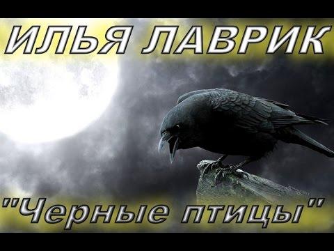 """NAUTILUS POMPILIUS""""ЧЕРНЫЕ ПТИЦЫ""""ИЛЬЯ ЛАВРИК  (cover)"""