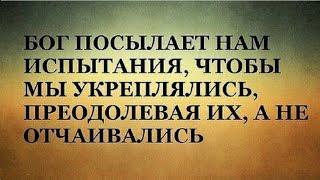 Евгений Бердеников - ТУДА ГДЕ НАС ЖДУТ