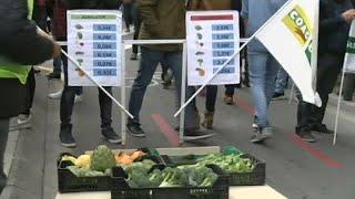 """Centenares de agricultores exigen precios """"justos"""" en Murcia"""