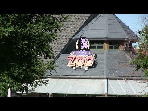 Denver Zoo 2015 - HD