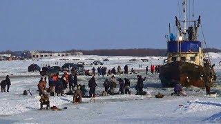 Сахалин Поронайск Рыбаки ловят навагу на реке Поронай 4 февраля 2020 года