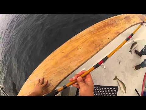 Channel Islands Sportfishing Pacific Islander Overnight 04-09-16