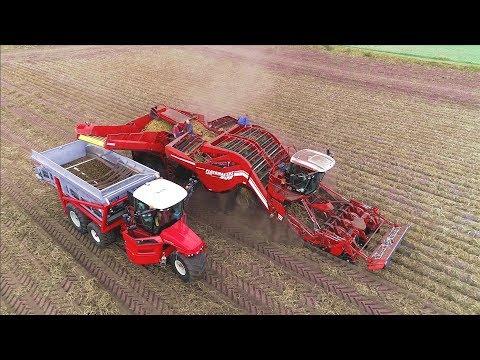 Potato Harvesting | Grimme Ventor 4150 & Vervaet Hydro Trike Xl | Ploegmakers Rips