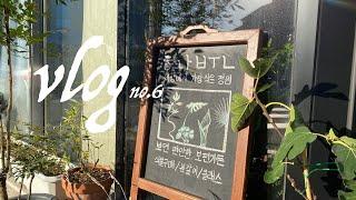 [식물가게vlog]가게 밖에 세워 놓는 우드칠판에 그림…