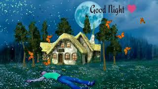 Good night status download   Good night videos for whatsapp
