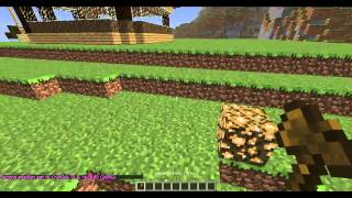 Тоториал-Как заприватить и удалить регион в Minecraft