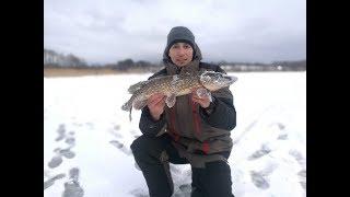 Зимняя рыбалка на Браславских озерах: Богинское и Высокое