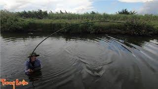 Nhật ký câu cá rô đồng - Tập 6:   Tìm ra thủ phạm giật gãy cần, quát lưỡi, kéo trôi ụt ụt