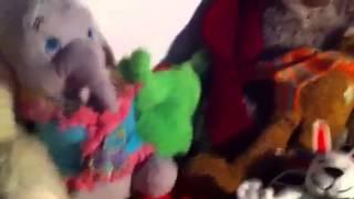 All my stuffed animals - Stafaband