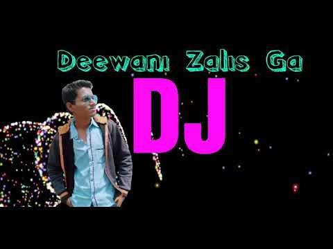 Deewani Zalis Ga DJ MANGESH