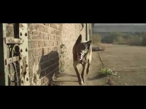 SKRILLEX   Bangarang feat  Sirah  Music  mp4