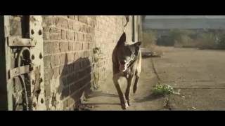 SKRILLEX Bangarang Feat Sirah Official Music Video Mp4