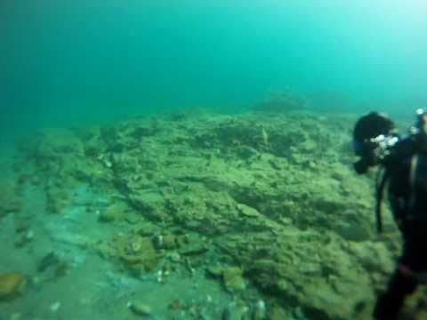 Scuba Diving Harbour Main, Newfoundland. Dive and collection