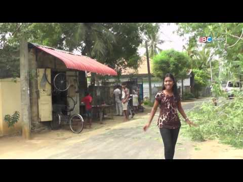 Vanakkam Thainadu | Kokuvil roads - Jaffna  | Episode - 374 | Part -01| IBC Tamil TV