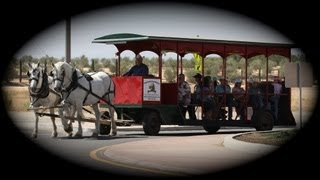 TRAILS AND TROLLEY wine country Temecula California