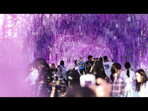 شاهد: الصينيون يحتفلون بمهرجان منتصف الخريف  - نشر قبل 3 ساعة