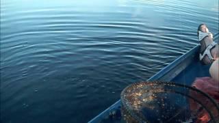 fishing upper myakka lake