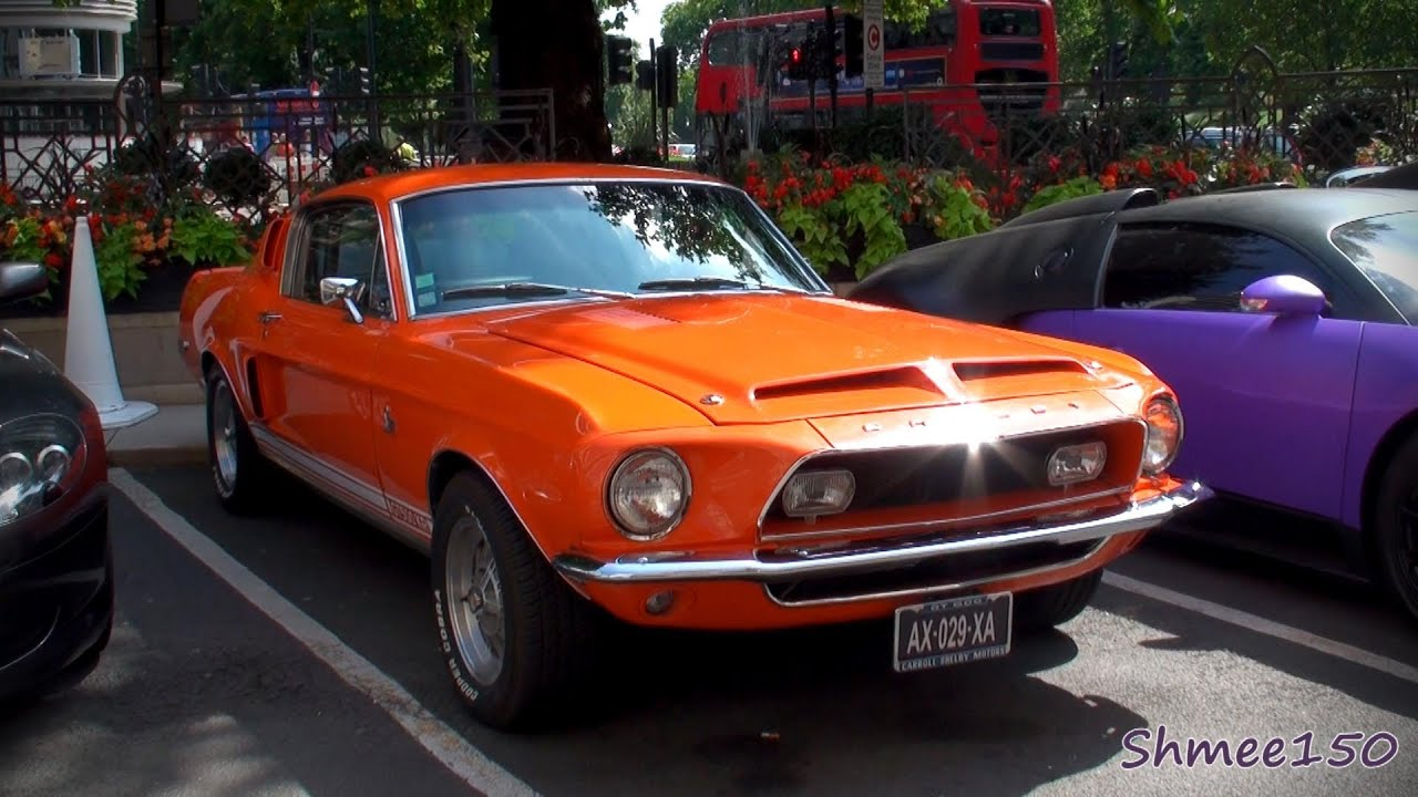 shelby gt500kr king - photo #7