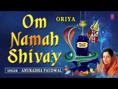 Om Namah Shivay Oriya Shiv Dhuni By...