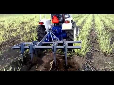 Vaibhav Adjustable Cultivator in Sugarcane farm