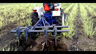 Vaibhav Adjustable Cultivator in Sugarcane farm
