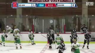 NDWH Hockey vs Xavier 1/13/18