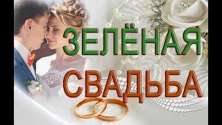 🌸Бесплатный  🌸Свадебный проект ProShow Producer6 🌸 Зимняя свадьба