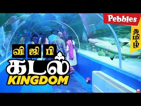 India's First Underwater Aquarium   VGP Marine Kingdom   Underwater tunnel in Chennai