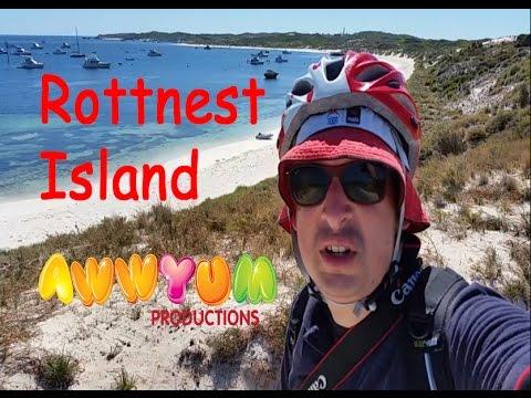 Rottnest Island Review