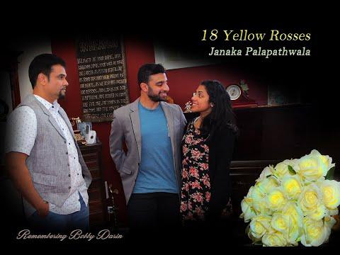 18 Yellow Roses - Janaka Palapathwala