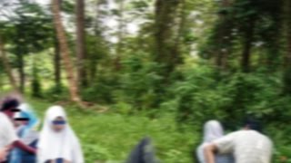 Download Video Pesta Seks Pelajar SMA di Kendal Jateng di hutan MP3 3GP MP4