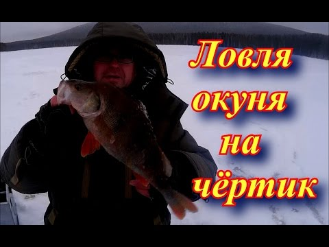 рыбалка ловля окуня на чертика