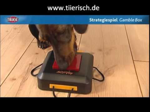 Trixie Dog Activity Gamble Box