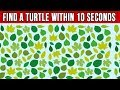Impossible Hidden Objects To Test Your Brain!