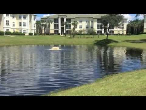 Ten Minutes From Disney Beautiful Lakeside Penthouse at Legacy Dunes Resort!