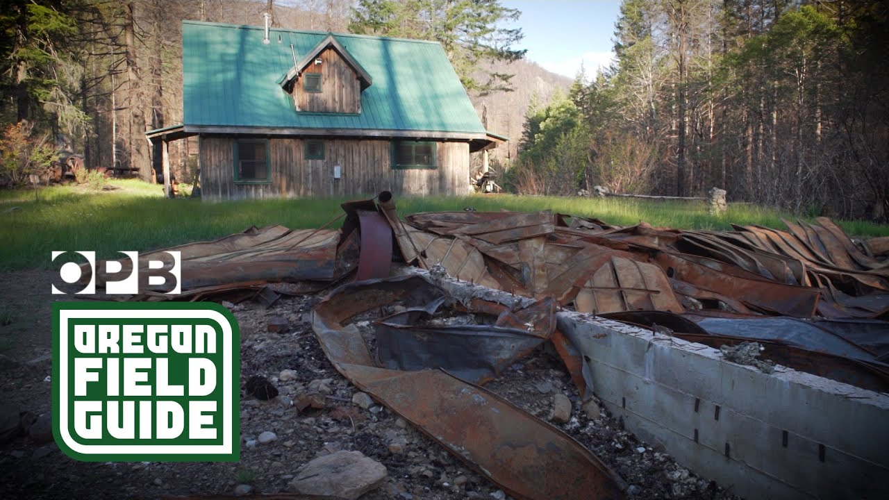 Download What Opal Creek Wilderness looks like after the Beachie Creek Fire