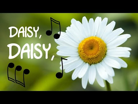 Daisy, Daisy Bell (bicycle built for two) instrumental cover