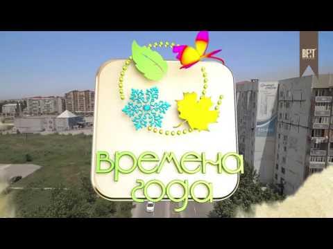 Проекты компании Beit Development