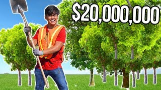 I Tried Planting 20,000,000 Trees (MrBeast & Mark Rober)