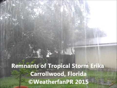 Remnants of Tropical Storm Erika in Carrollwood, Florida