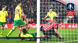 Video Gol Pertandingan Southampton vs Norwich City