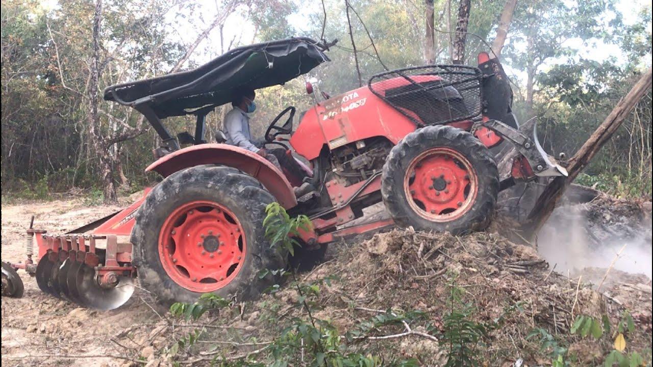 Kubota M6040su Tractor Pushing Over Tree At Work ត្រាក់ទ័ររុញដីធ្វើចំការ