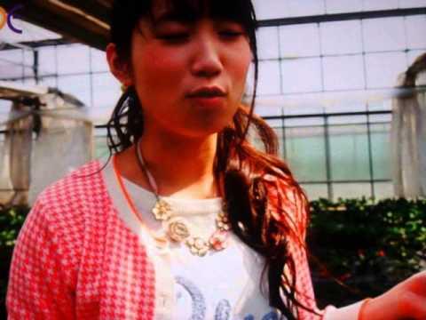 GEDC3527 2015.05.29 nikkei ashahi at ichoigaya koujimachi chimuny with radio and TV