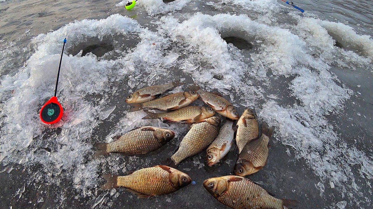 Рыбалка на первом льду карася