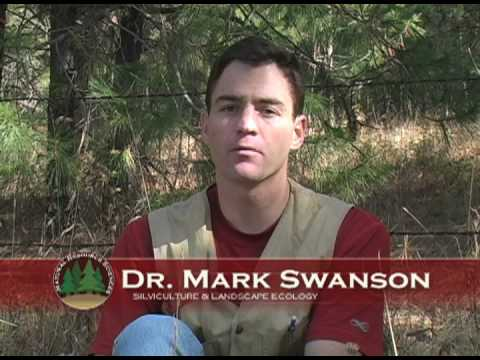 Silviculture Washington State University