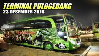 SPESIAL LIBURAN | Bus yang Tersisa Malam Hari di Terminal Bis Pulogebang Jakarta Timur