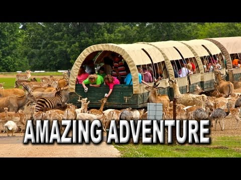 Amazing Adventure Awaits at the Global Wildlife Center in Louisiana