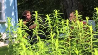Съемки фильма Веры Глаголевой